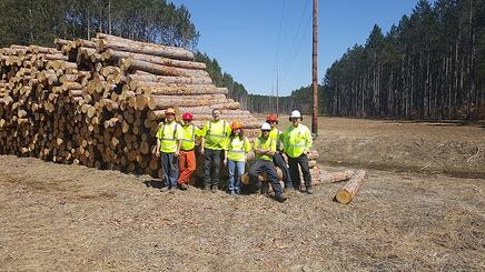 A work crew at Quality Tree Service of West Michigan, Inc.